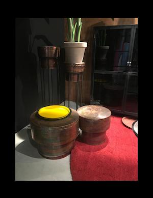 Cenon plantenstandaards set van 2